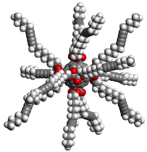 lipofullerene2